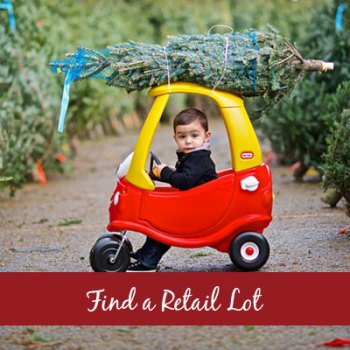 Find a Wisconsin retail Christmas Tree Lot