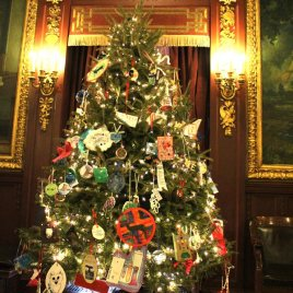 2019 Grand Champion, Yeska Bros. Whispering Pines Tree Farm, donated this tree to the people of Wisconsin, placing it in the Governor's Conference Room.
