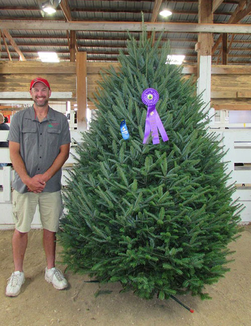 About The Wisconsin Christmas Tree Producers Association